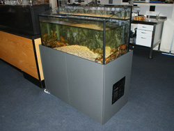 Lobster aquariums