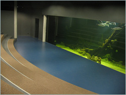Installations Waterprojects for Musea and Parcs